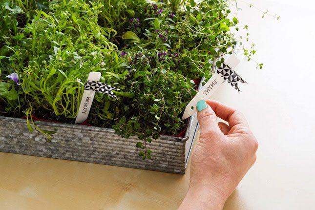 Finished VELCRO® Brand Planter