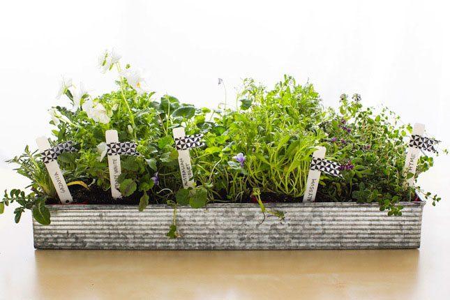 How DIY Planter VELCRO® Brand Gardening