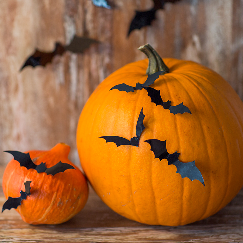 Bat Pumpkin Idea for Halloween