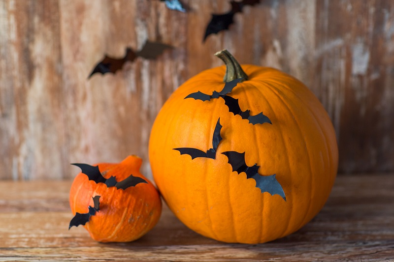 Bat Pumpkin Ideas