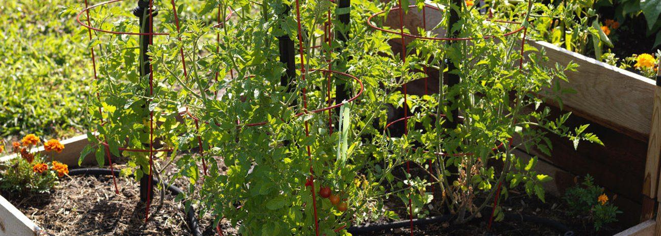 May_Gardening_Jobs