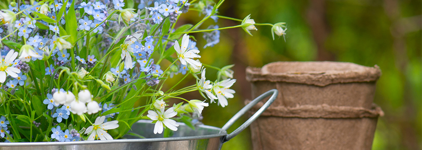 Plastic Free Gardening Tips