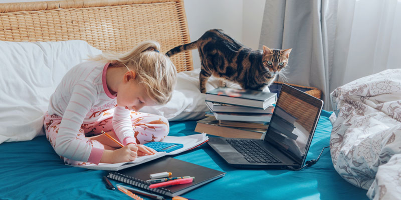 Girl studying with cat during pandemic