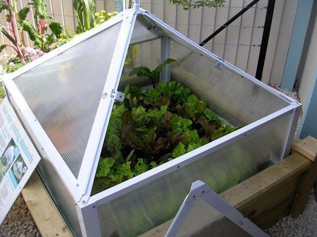 VELCRO Brand Gardening Tips Charlie Nardozzi