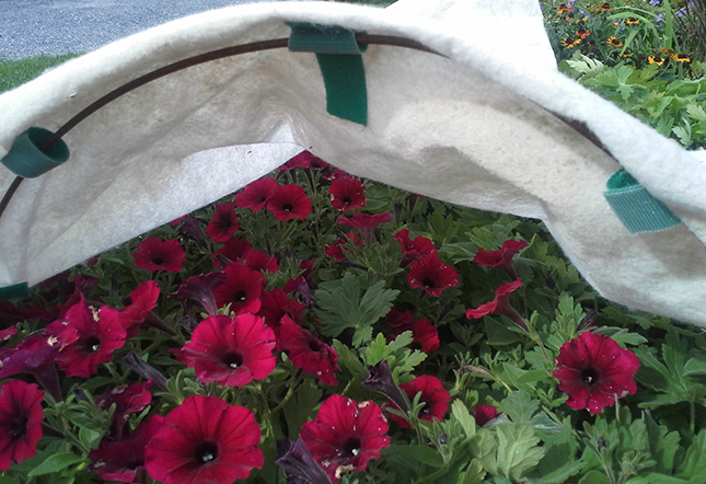 Row_Cover_VELCRO®_Brand_Ties_Gardening