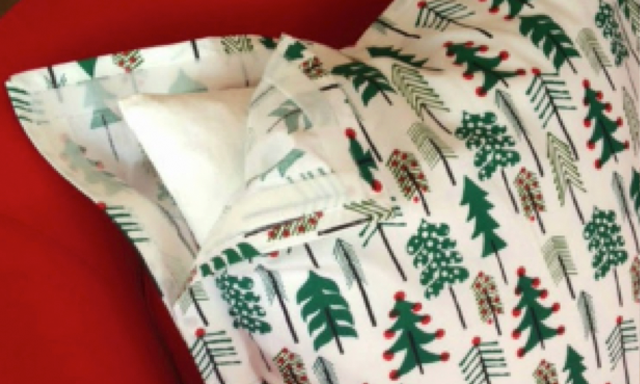 Sabrina Soto and VELCRO® Brand DIY Holiday Throw Pillow