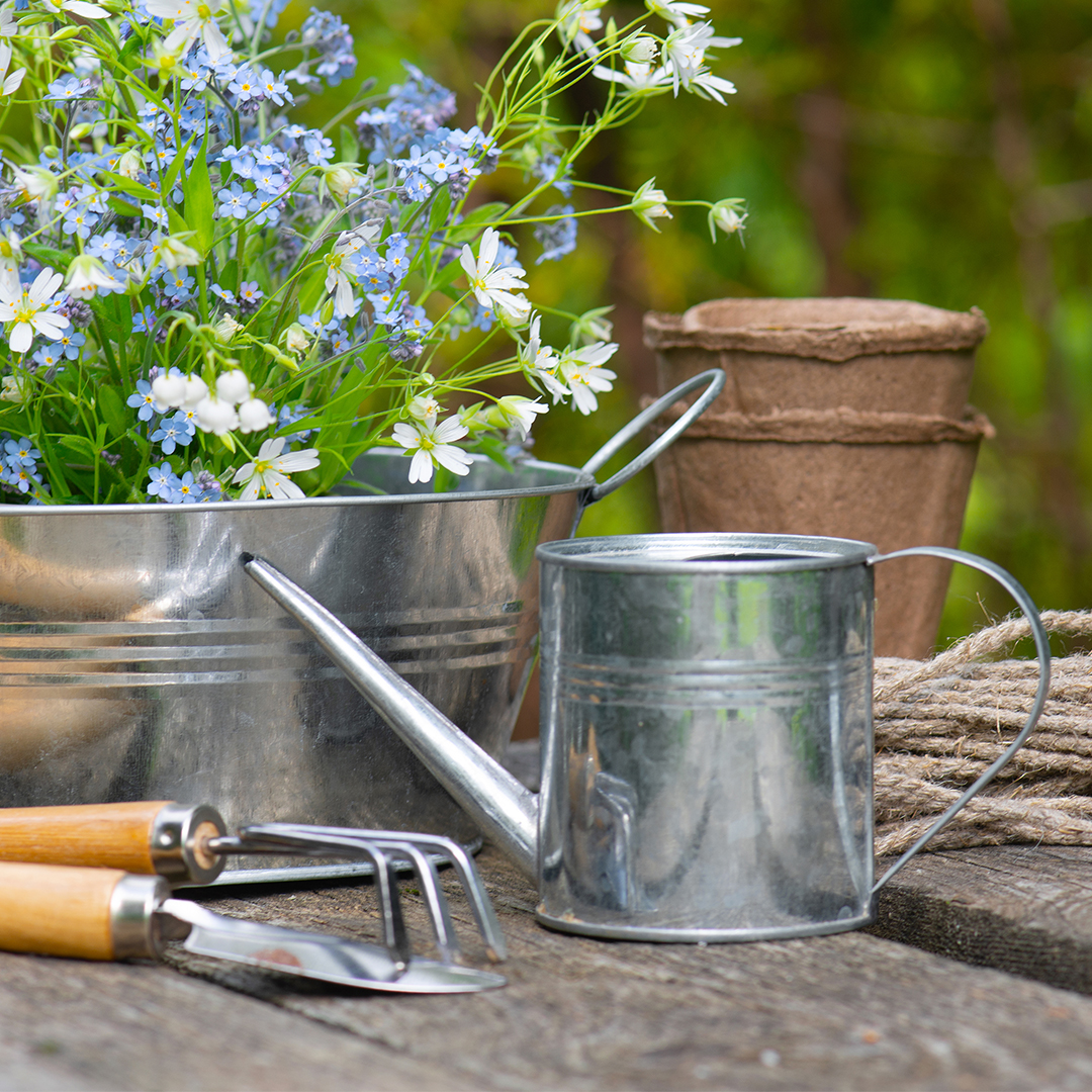 How to Use Less Plastic in Your Garden